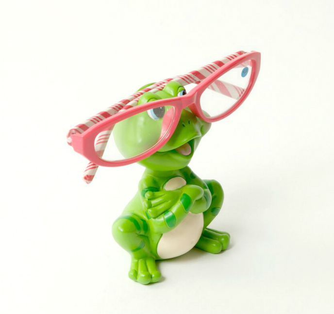 Froggymoorf Eye Glass Holder